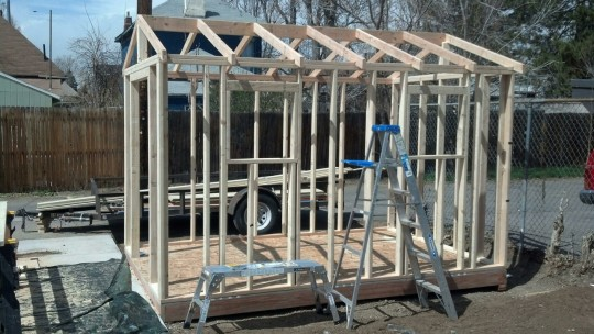 Our nice craigslist friend, Victor, built us a shed