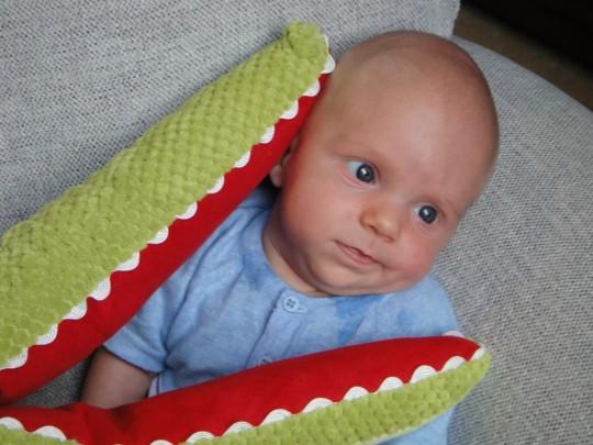 Luke with Joel's favorite alligator toy