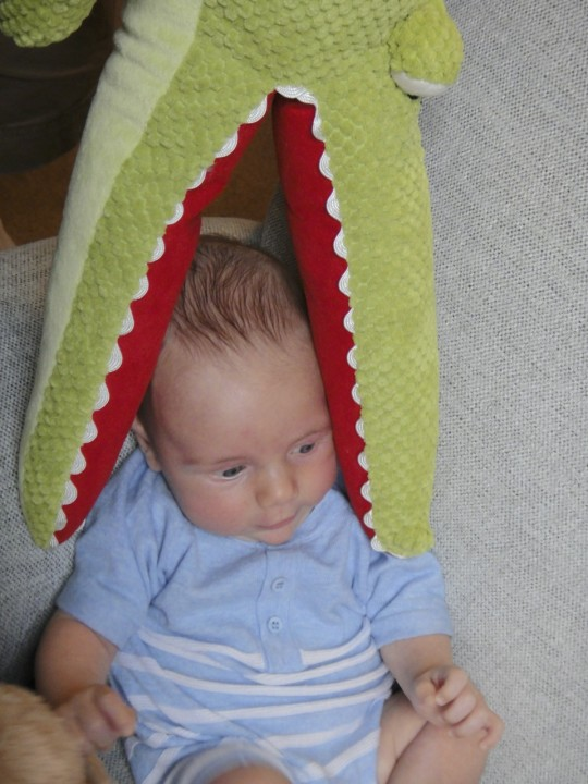 Noah with Joel's favorite alligator toy