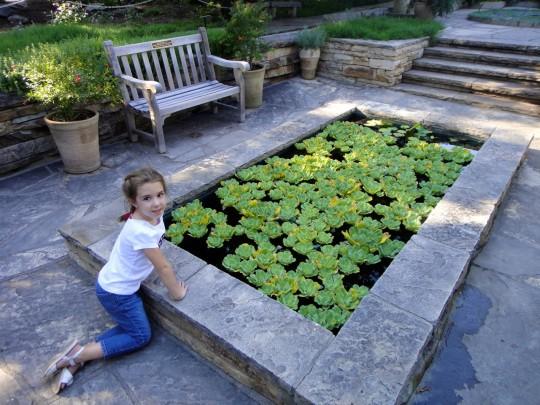 Evie at the botanic gardens
